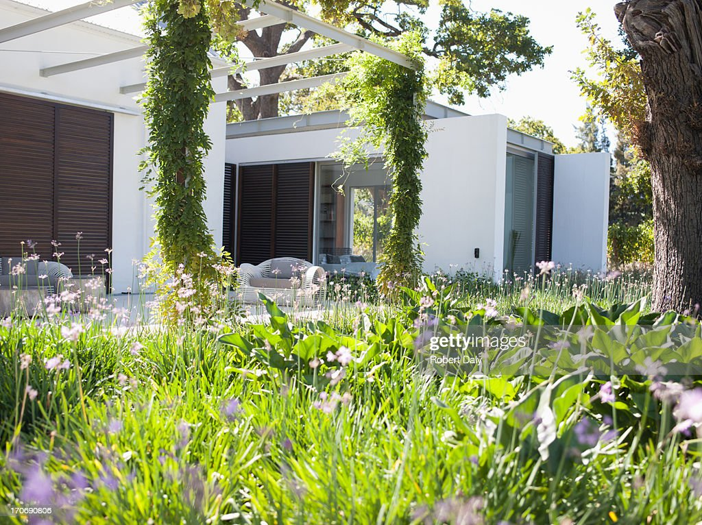 Patio and garden in rear of modern home
