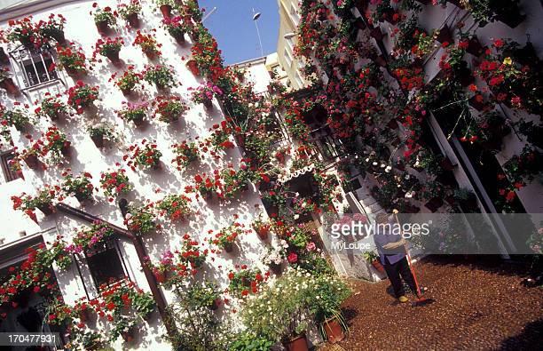 Patio in the Jewish Quarter of Cordoba Spain
