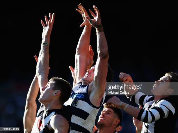 Patrick Dangerfield of the Cats compete for the ball during the round 22 AFL match between the Collingwood Magpies and the Geelong Cats at Melbourne...