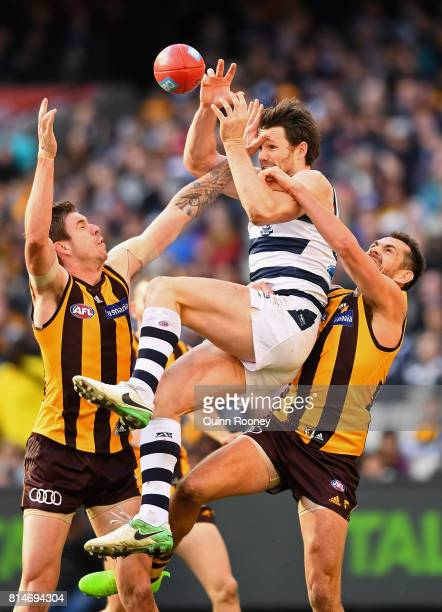 Patrick Dangerfield of the Cats marks over the top of Luke Hodge of the Hawks during the round 17 AFL match between the Geelong Cats and the Hawthorn...