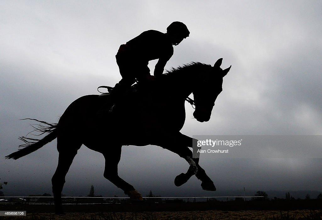 Patrick Mullins riding Bordini on the gallops at Cheltenham racecourse on March 09 2015 in Cheltenham England