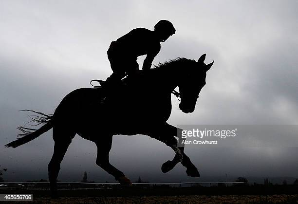 Patrick Mullins riding Bordini on the gallops at Cheltenham racecourse on March 09 2015 in Cheltenham England