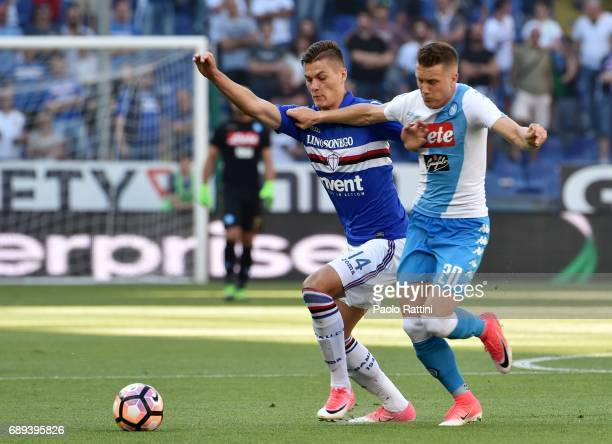 Patrik Schick and Piotr Zielinski during the Serie A match between UC Sampdoria and SSC Napoli at Stadio Luigi Ferraris on May 28 2017 in Genoa Italy