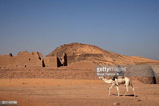 Patrol from camel back
