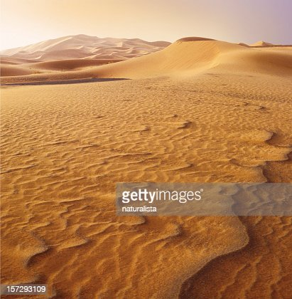 Patterns in sand of the Sahara desert at sunset