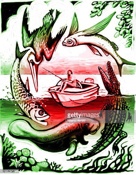 Patterson Clark color illustration of woman fishing from boat surrounded by circle of fish alligator flying fish manatee Can be used with...