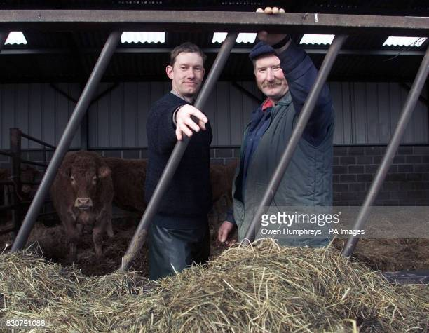 Paul and Michael Burn from Rose Cottage farm in Northumberland who have restored cattle to their farm Britain was today spending its first day...