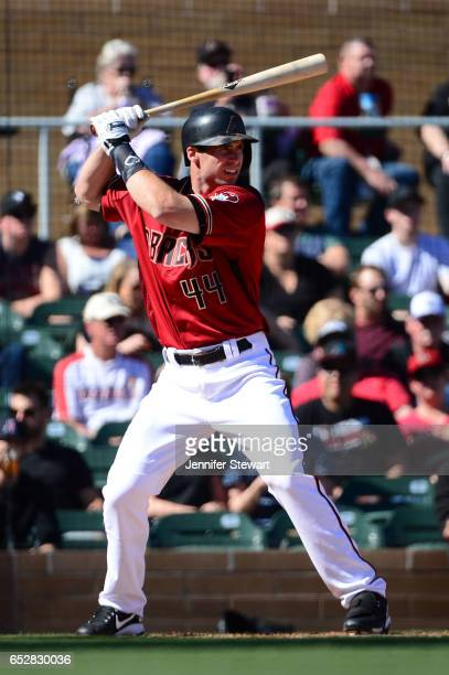 Paul Goldschmidt of the Arizona Diamondbacks stands at bat during the spring training game against the Colorado Rockies at Salt River Fields at...