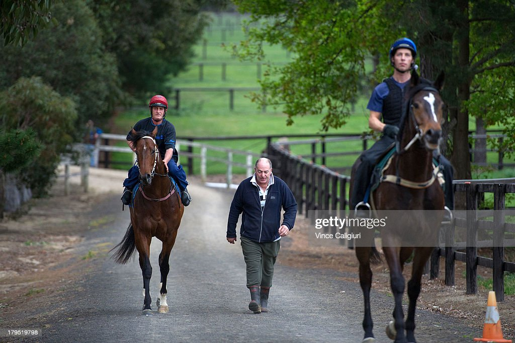 Paul Guise riding Cauthen walks back to stables with trainer <a gi-track='captionPersonalityLinkClicked' href=/galleries/search?phrase=Andrew+Campbell&family=editorial&specificpeople=1689074 ng-click='$event.stopPropagation()'>Andrew Campbell</a> after trackwork at Talwood Park on September 5, 2013 in Melbourne, Australia.