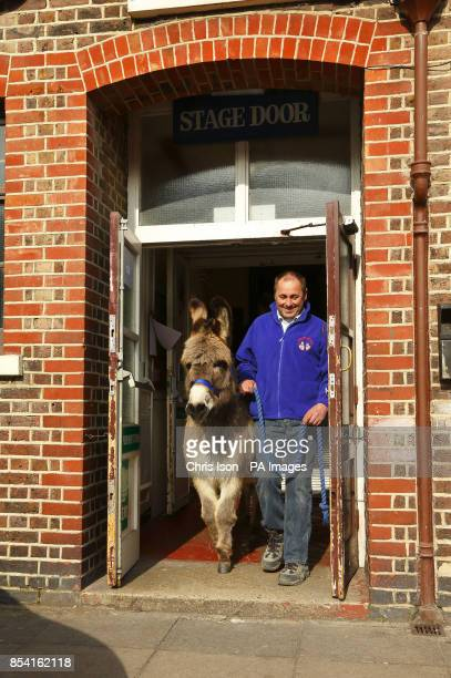 Paul Hunt leaves through the stage door with Ollie after successfully auditioning the donkey for a role in Carmen at the King's Theatre in Southsea...