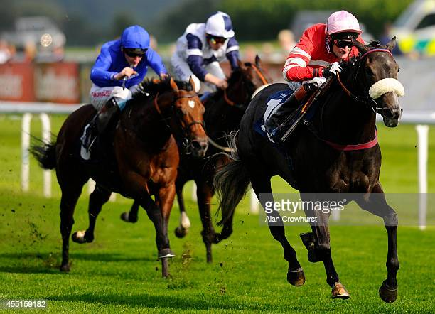 Paul Mulrennan riding Mecca's Angel win The John Smith's Original Scarbrough Stakes at Doncaster racecourse on September 10 2014 in Doncaster England