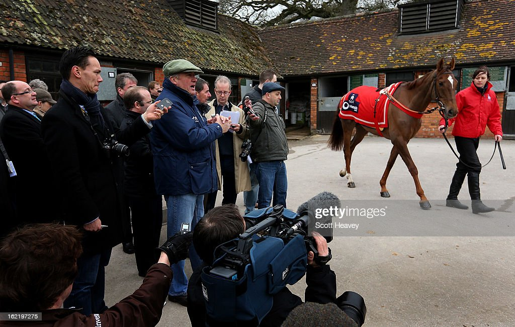 Paul Nicholls with Silviniaco Conti during a stable visit to Manor Farm Stables on February 20, 2013 in Shepton Mallet, England.