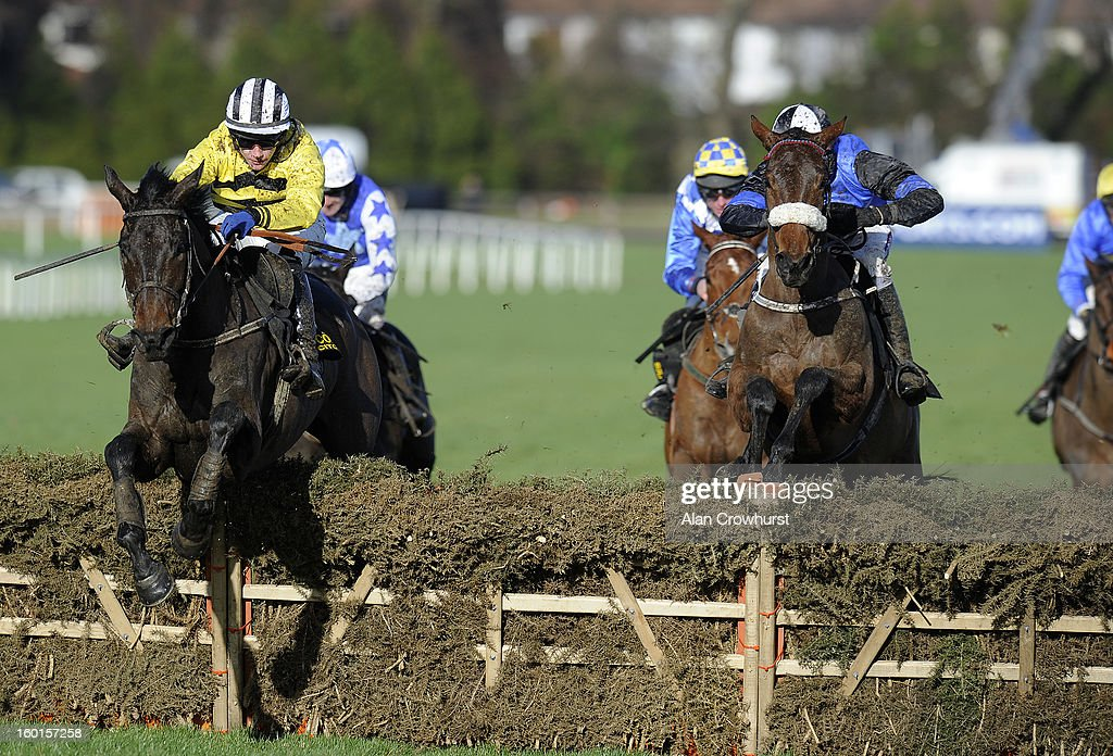 Paul Townend riding Glens Melody (L) clear the last to win The Frank Ward Solicitors Solerina Mares Novice Hurdle at Leopardstown racecourse on January 27, 2013 in Dublin, Ireland.
