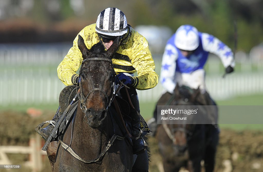 Paul Townend riding Glens Melody clear the last to win The Frank Ward Solicitors Solerina Mares Novice Hurdle at Leopardstown racecourse on January 27, 2013 in Dublin, Ireland.