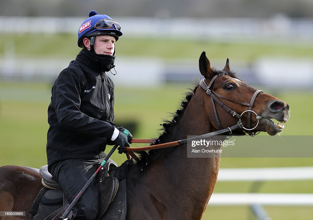 Paul Townend riding Hurricane Fly walk round the gallops at Cheltenham racecourse on March 11, 2013 in Cheltenham, England.