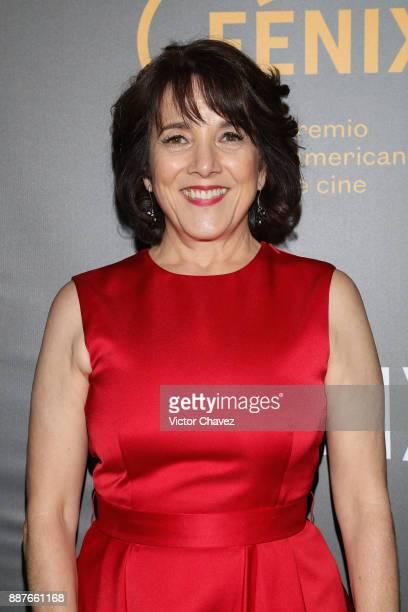 Paulina Garcia attends the Premio Iberoamericano De Cine Fenix 2017 press room at Teatro de La Ciudad on December 6 2017 in Mexico City Mexico