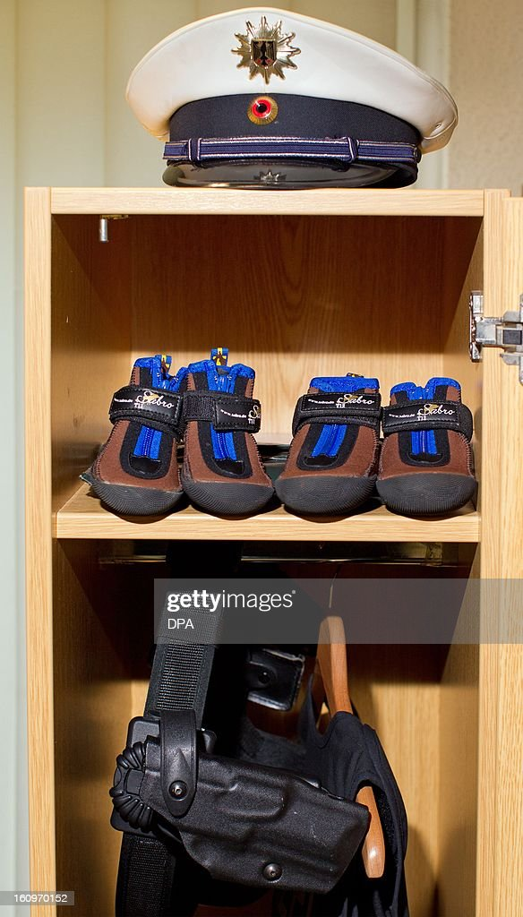 Paw protectors for a police dog lay in the wardrobe of a police dog handler of the Federal Police in Osnabrueck, western Germany, on February 8, 2013. All dogs of the Osnabrueck police's K-9 unit wear these special shoes when they are on duty.