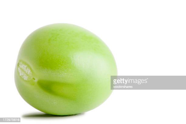 Pea vegetable isolated on white