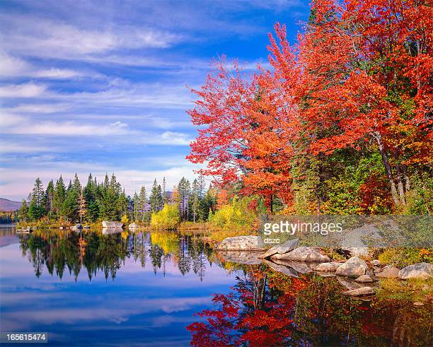Peaceful colorful autumn fall foliage Jericho lake, New England