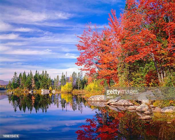 Tranquillo autunno colorato autunno foglia Jericho lake, New England