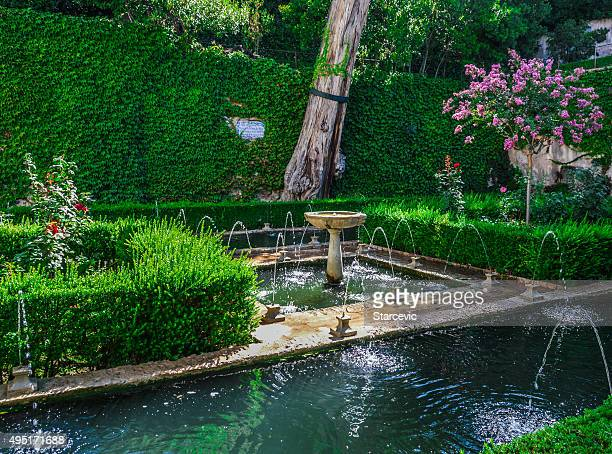 Peaceful garden in Alhambra
