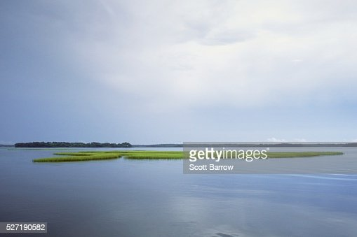 Peaceful lake : Bildbanksbilder