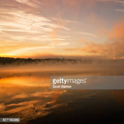 Peaceful misty lake : Bildbanksbilder