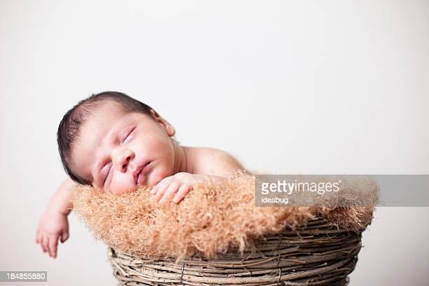 Paisible dans un panier de couchage nouveau-né avec un arrière-plan blanc