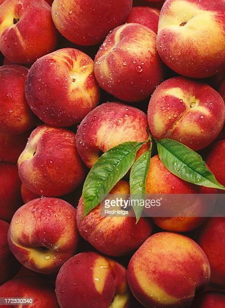 Peach Tapete (2
