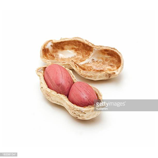 Peanut isolated on a white background