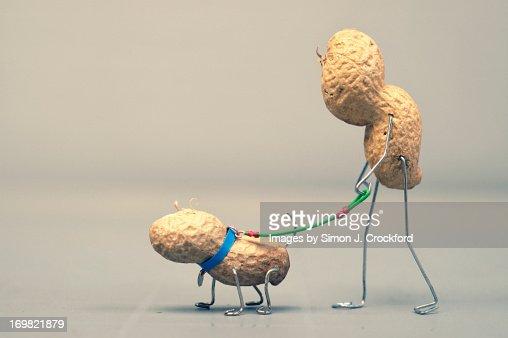 Peanut man walking peanut dog