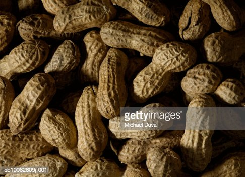 Peanuts, elevated view : Stock Photo