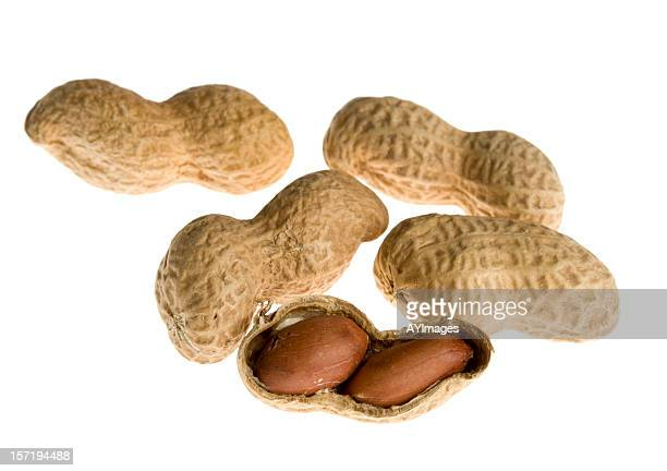 Peanuts in shell on white background