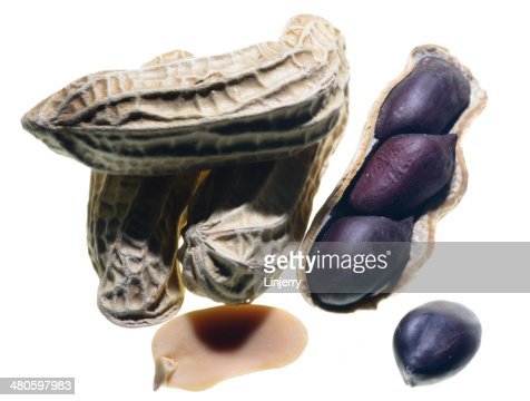 peanuts on the white background : Stock Photo