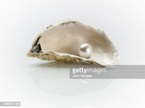 pearl and oyster shells : Stock Photo