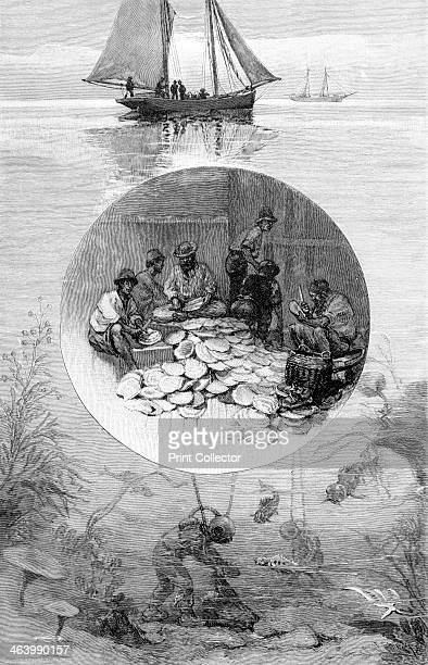 Pearl Fishery Torres Strait Australia 1886 Wood engraving from 'Picturesque Atlas of Australasia Vol II' by Andrew Garran illustrated under the...