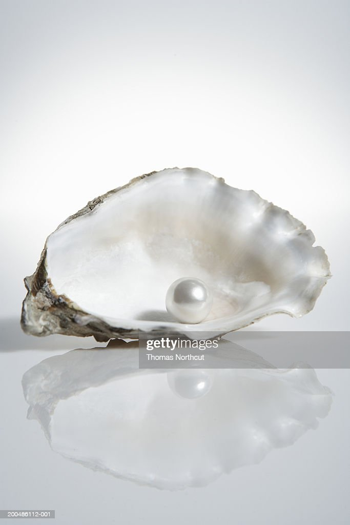 Pearl inside oyster shell