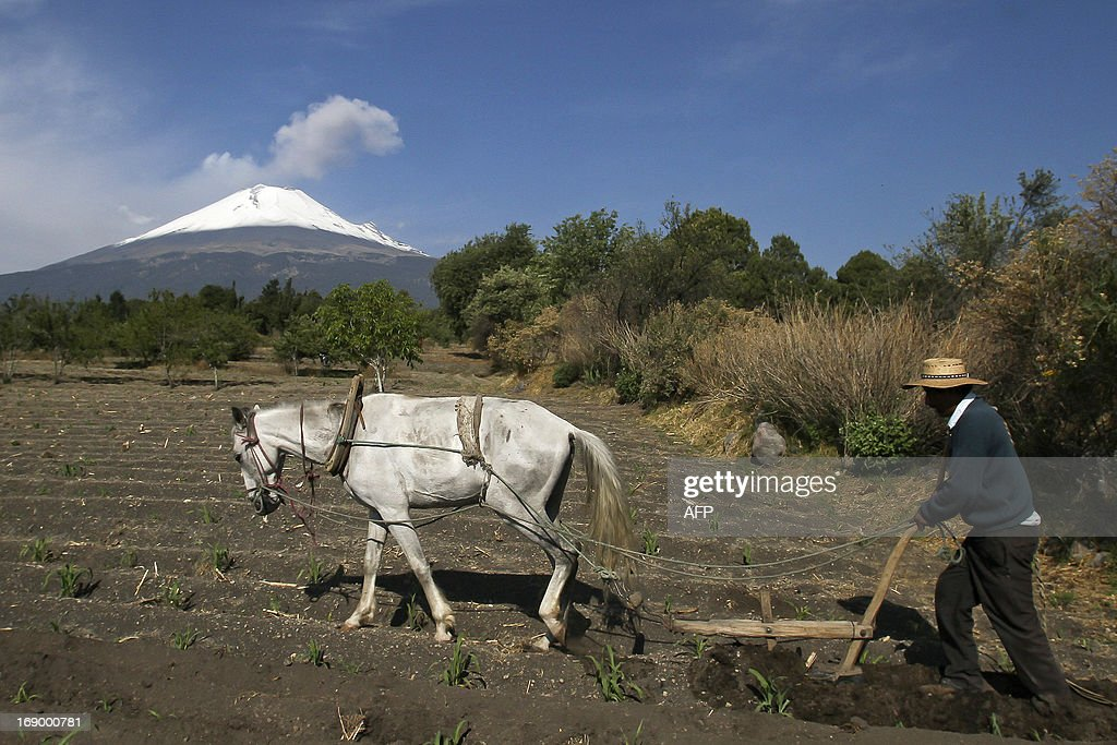 A peasant is seen working as Popocatepetl Volcano, Mexico's second highest peak, just 55 kms southeast of Mexico City, is seen from Santiago Xalitxintla, in Puebla, on May 18, 2013 spewing a cloud of ash and smoke. The National Disaster Prevention Centre (CENAPRED) raised the alert level to 'yellow phase three'. AFP PHOTO/ J. Guadalupe Perez