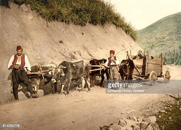 Peasants and Wagon Bosnia AustroHungary Photochrome Print circa 1900