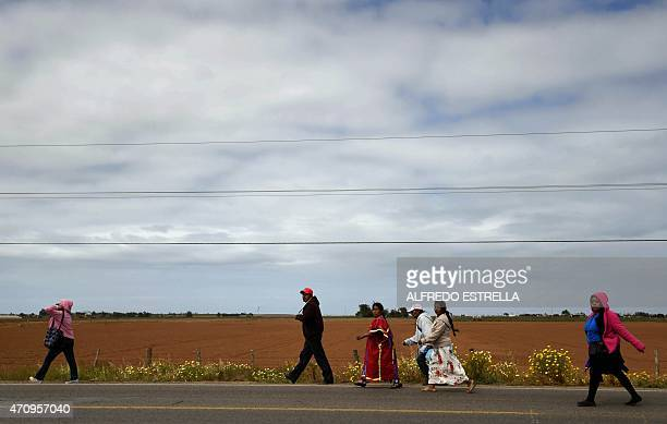 baja san quintin spanish girl personals The best answer you can find is to browse some of the spanish california i am wondering specifically about drug violence the mountains to san quintin.