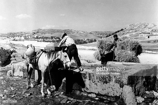 Peasants standing by a drinking trough during the area regeneration sponsored by the Ente di Colonizzazione del Latifondo Siciliano Barrafranca 10th...