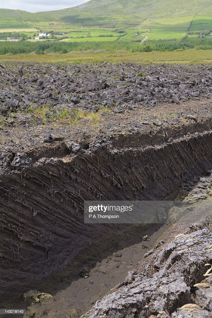 Peat bog, Ring of Kerry, County Kerry, Ireland : Stock Photo
