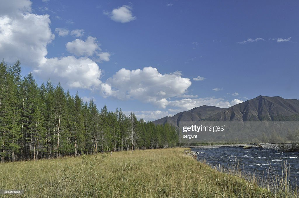 Pebble Bank of a mountain river. : Stock-Foto