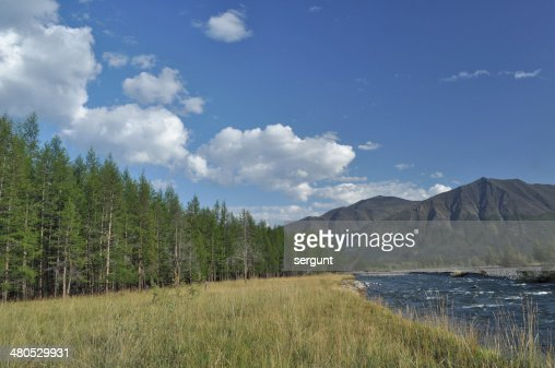 Pebble Bank of a mountain river. : Stockfoto