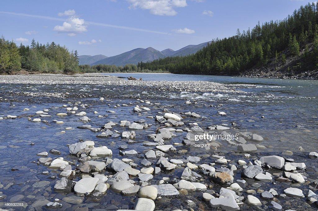 Pebble Bank of a mountain river. : Stock Photo