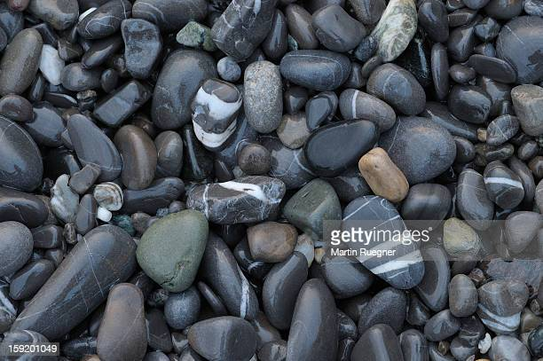 Pebbles, Italian Riviera, Liguria, Italy