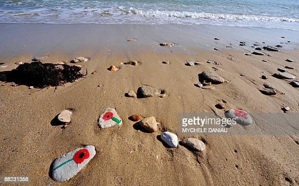 Pebbles with poppies painted on are seen on the beach of SaintAubinsurMer on June 5 2009 during a ceremony in memory of Canadian troops which landed...