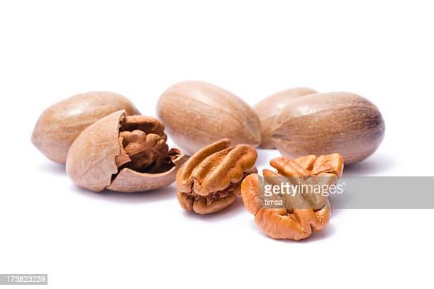 Pekannüssen im shells