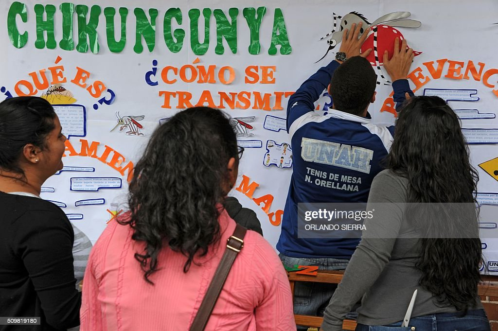 Pedagogy studnets of the National Autonomous University of Honduras (UNAH) make posters as they start a campaign to prevent Zika, Dengue and Chikungunya virus in Tegucigalpa on February 12, 2016. AFP PHOTO / ORLANDO SIERRA / AFP / ORLANDO SIERRA
