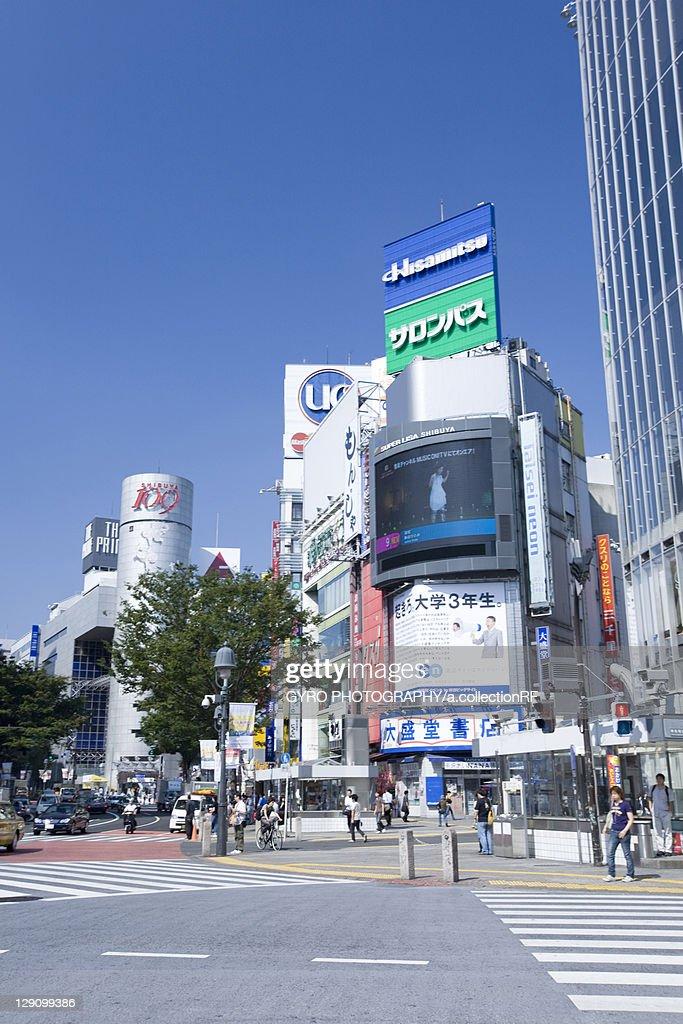 Pedestrian Crossing at Shibuya Station